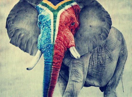 周鹏飞的绘画题材从玫瑰花,枫叶,蜥蜴,蜘蛛侠再到大象,他不断在挑战